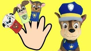 Paw patrol español: canciones infantiles bebes patrulla canina.Videos Familia dedo y 5 monitos