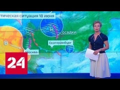 """""""Погода 24"""": аномальная жара возвращается в европейскую часть России - Россия 24"""