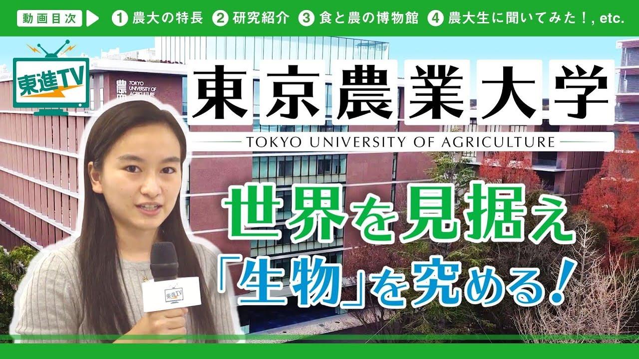 【東京農業大学】東京近郊の大学で最先端の研究を深める!! | 人類の生きるを支える学びとは!?