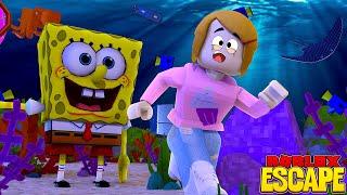 Roblox Escape Spongebob Obby With Molly!