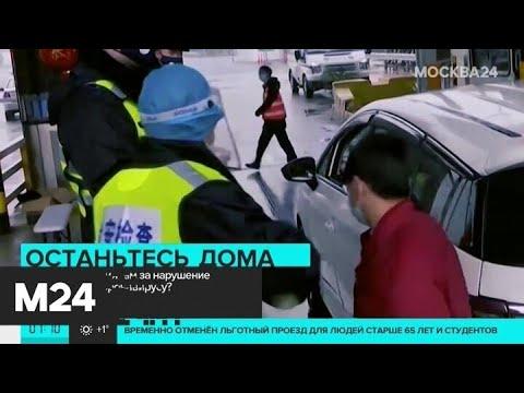 Что грозит россиянам за нарушение карантина - Москва 24