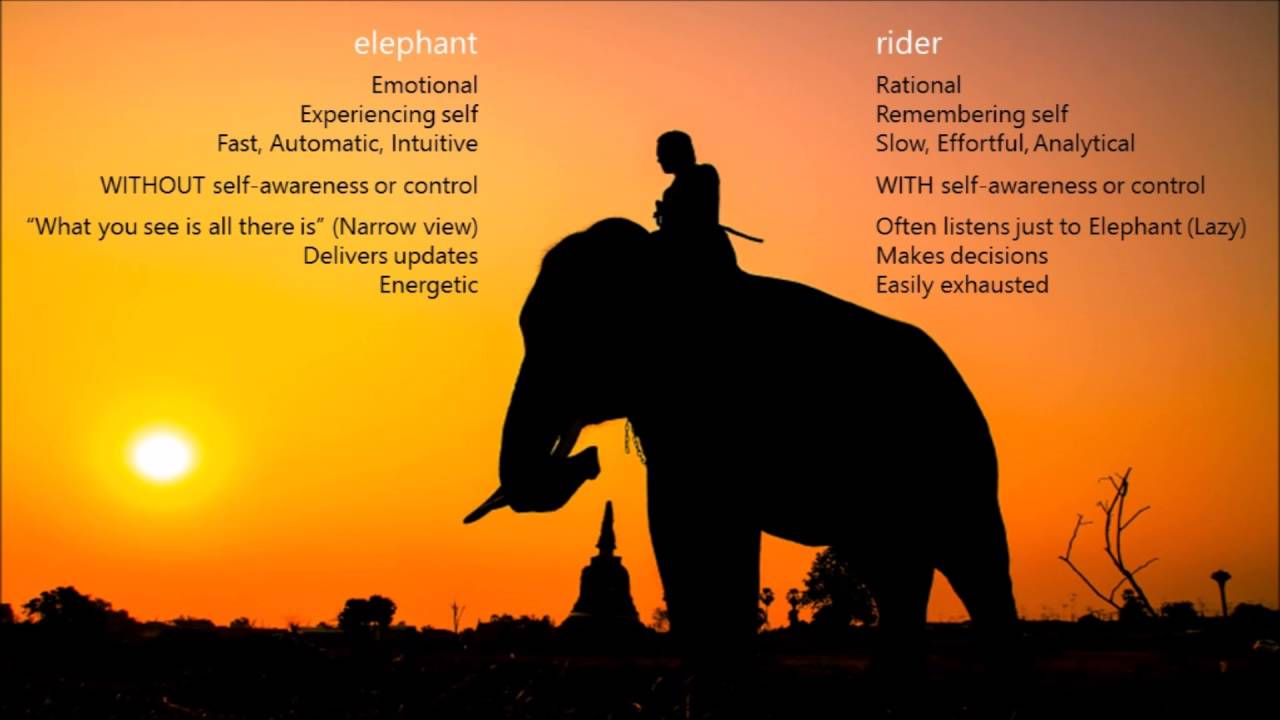 The Elephant & The Rider - Embracing Uncertainty - YouTube