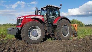Трактор Massey Ferguson с мульчером TMC Cancela удаление древесно-кустарниковой растительности