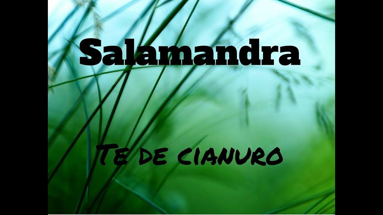 salamandra-te-de-cianuro-letra-letras-de-canciones
