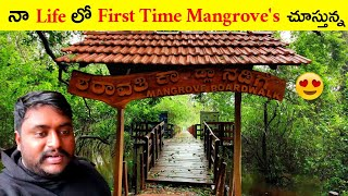 Sharavathi Kadla Mangrove   Hanging Bridge   Karnataka Drive   Explore With Vijay  