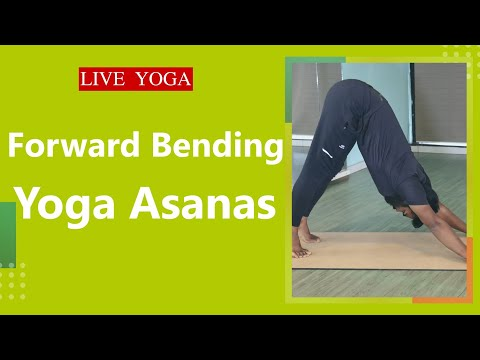 Antyodaya Yoga Studio International Yoga Teacher Training School Yoga Alliance Us Live Stream Youtube