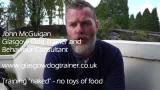 """naked"" Dog Training - Without Food Or Toys"
