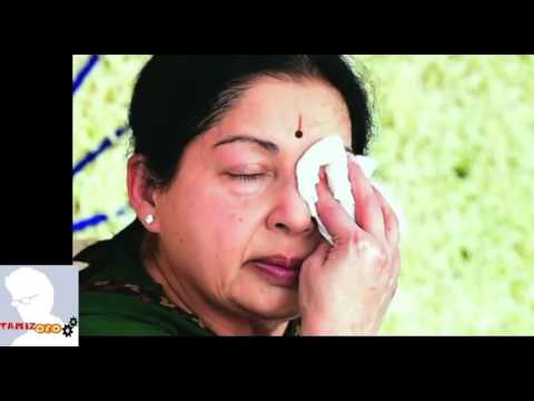 About Real Status Of Cm Jayalalitha