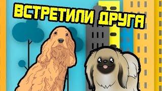Собака любит когда хозяин чухает за ушком. Спаниель Сёма встретил друга на улице.
