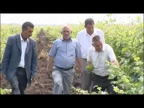 Azerbaijan Agriculture - The World Bank