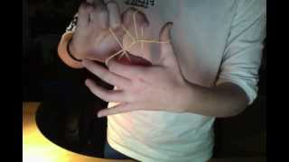 Elastic band magically blend through each other :-) great trick
