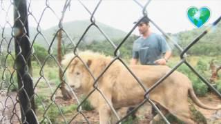 Kevin Richardson with White Lion Thor