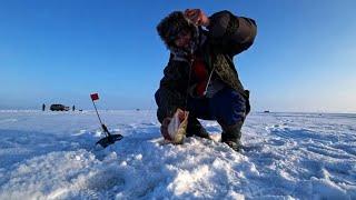 Рыбалка в Заповеднике Озеро Султан На Рыбалку на крутом Джипе