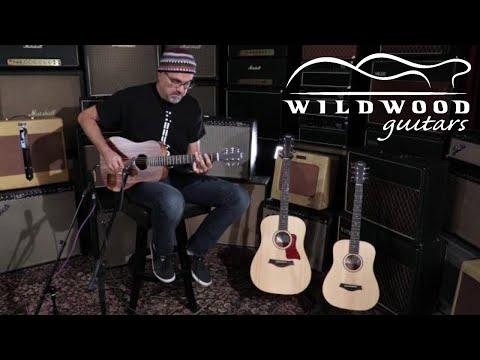 Taylor Guitars Baby Taylor Series  •  Wildwood Guitars