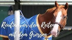 濾 Routine vor dem Reiten beim alten Pferd feat. dem Großen I Cowgirlupblog