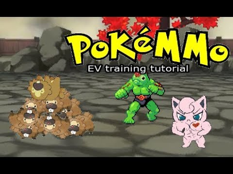 How to EV train every stat fast! • PokeMMO Tutorial •
