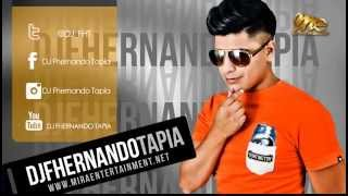 BLOCK PARTY MIX 11 BY DJ FHERNANDO TAPIA (REGGAETON DANCEHALL & EXITOS)