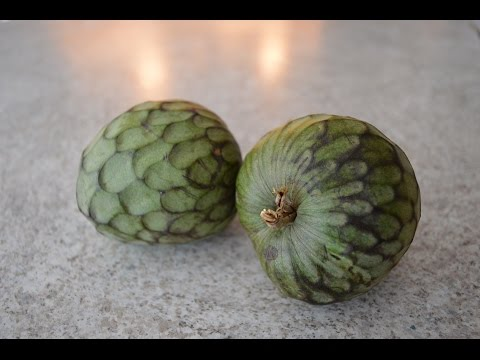 How to Prepare & Eat Cherimoya - aka Custard Apple: Cooking with Kimberly