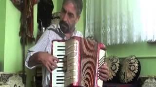 Lafij Şamil Qafe