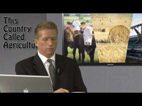 This Country Called Agriculture  EP 13,  Part 5- Production Economics in the Feed Industry