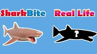EVERY BOAT, GUN, SHARK AND MORE IN REAL LIFE!   Roblox: SharkBite