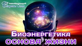 Вебинар-эзотерика. Биоэнергетика - основа жизни. Сергей Ратнер