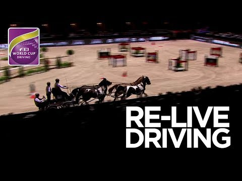 LIVE 🔴 | FEI World Cup™ Driving FINAL - Competition 1 | Bordeaux