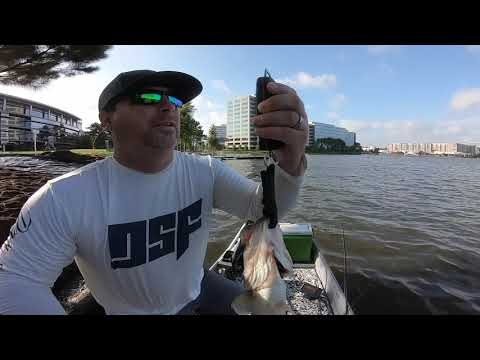 Fishing with the owner of DSF Apparel