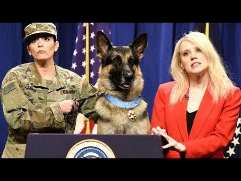 hero-dog-press-conference-snl-|-snl-season-45-|-saturday-night-live-|-by-today-updayes