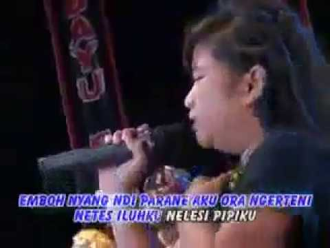Korbane wong tuo voc loly sagita