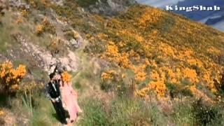 Anil Kapoor & Raveena - Hum Ne Tumko Chun Liya Hai*HD*1080p | Anuradha Paudwal, Kumar Sanu | Bulandi