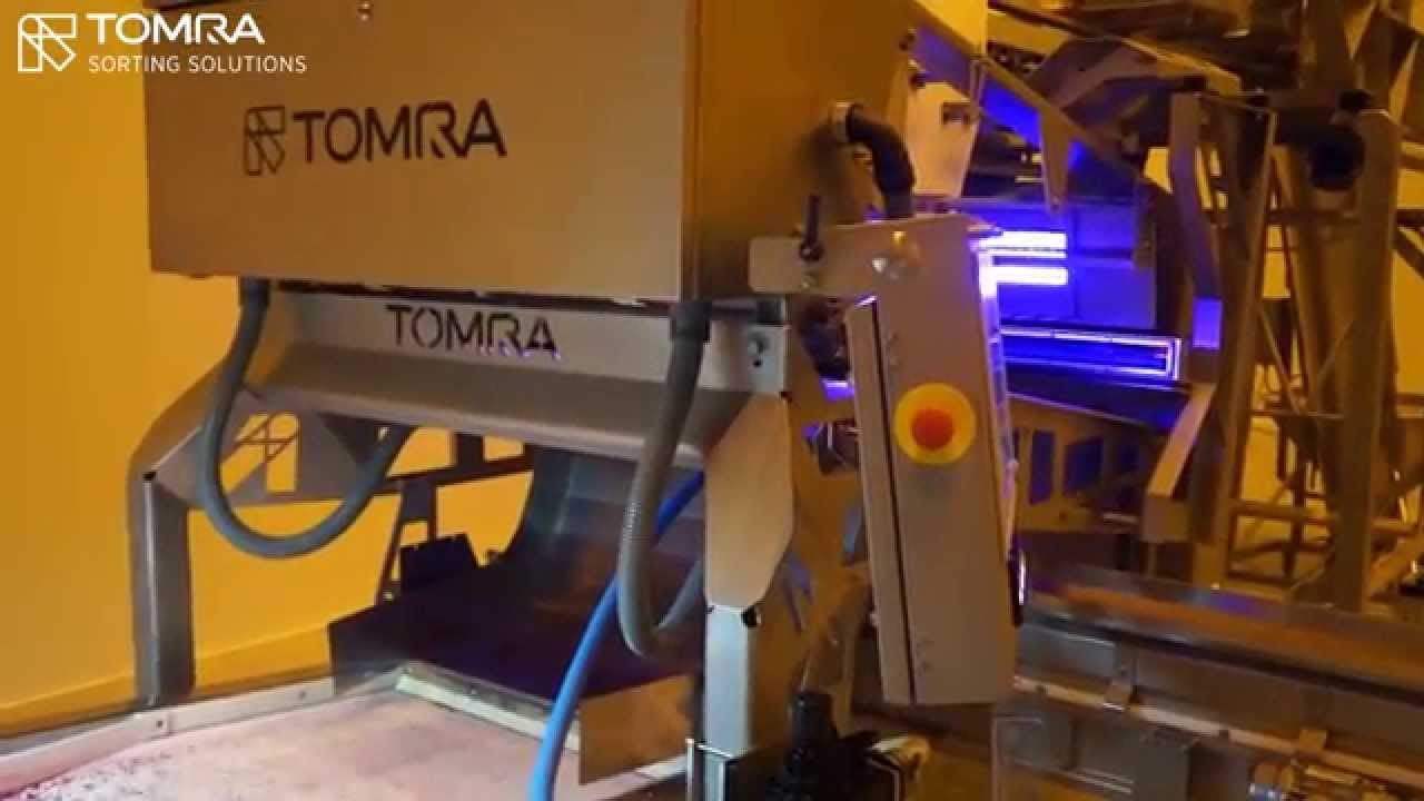 IQF raspberry dust sorter Blizzard - TOMRA Sorting