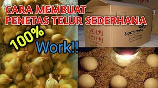 Gambar cover MEMBUAT ALAT TETAS TELUR SENDIRI SEDERHANA DARI KARDUS, Cepat & Mudah| how to make an egg hatcher