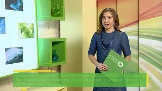 Самая деликатная защита - гигиенические средства Биоси   BIOSEA. Елена Коваленко