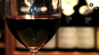Casillero del Diablo Tasting Notes - Merlot