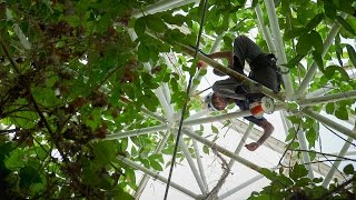 UA Biosphere 2 Rain Forest with Researcher Tyeen Taylor