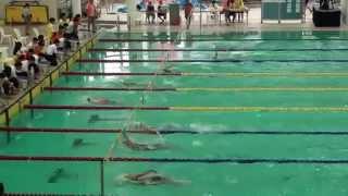 2014中學學界d1女子c組50米背泳h