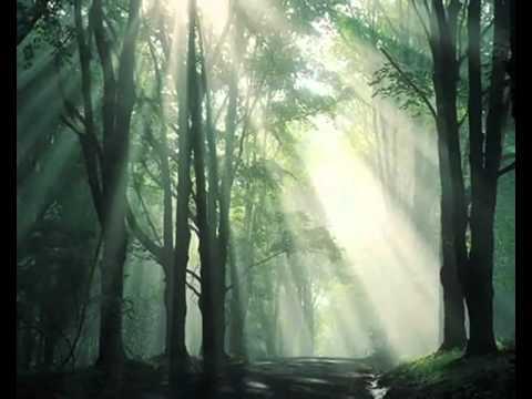 Manau Le Chant des Druides