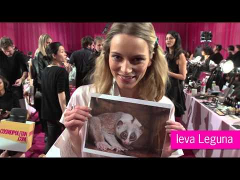 Victoria's Secret Models Make Hyena Faces. WHAT?!