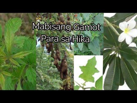 Pinoy MD: Puting buhok, dumadami nga ba kapag binubunot? from YouTube · Duration:  5 minutes 32 seconds