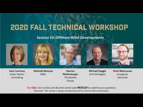 2020 Fall Workshop Session 10: Offshore Wind Developments