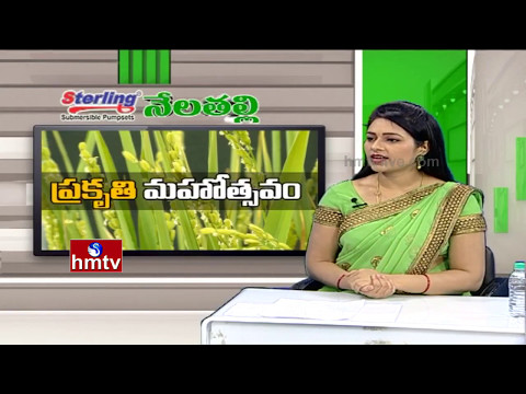 Special Debate With Save Company President Vijayaram Over Natural Farming Training Camp | Nela Talli