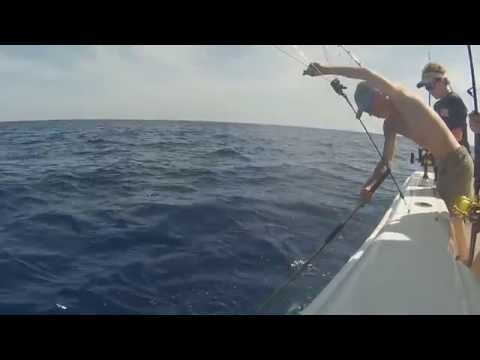Edisto, SC Offshore Fishing 4/27/14