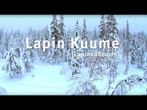 LAPIN KUUME (Lapland koorts) by Scandinavian Wintersports