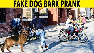 Fake Dog Bark Prank | Prank in Pakistan | Lahori PrankStar