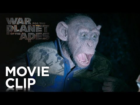 "Thumbnail: War for the Planet of the Apes | ""Bad Ape and Maurice"" Clip 