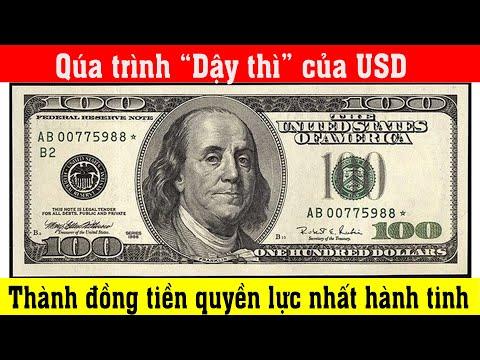 Mỹ đã làm gì để biến USD thành đồng tiền quyền lực nhất hành tinh ?