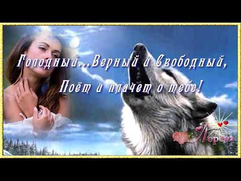 ТАНГО ОДИНОКОГО ВОЛКА...    автор ролика ЛОРЕНА