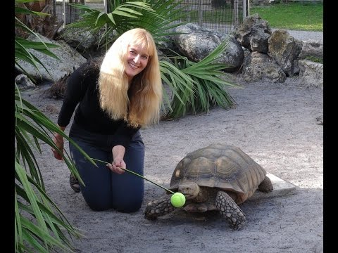 Exotic Animal Trainer Barbara Heidenreich
