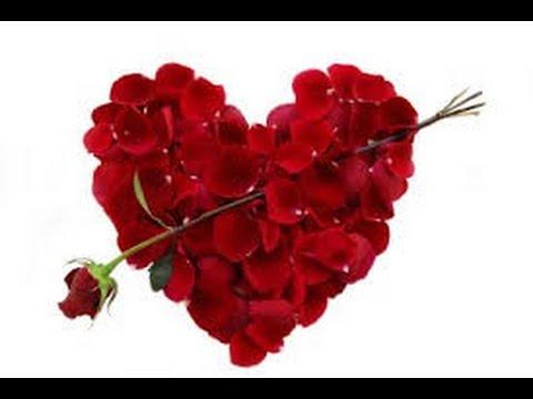 Telemensagem De Aniversário Bela De Esposo Para Esposa Querida